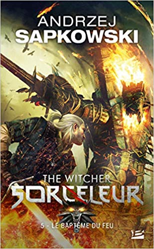 The Witcher (Sorceleur), Tome 5