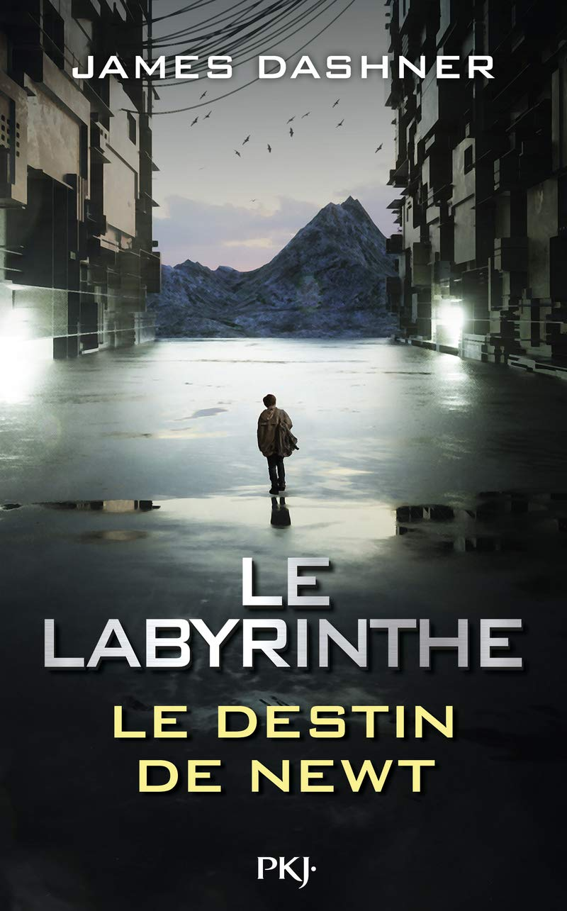 Le Labyrinthe - Tome 06
